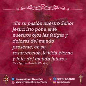 espanol (5)