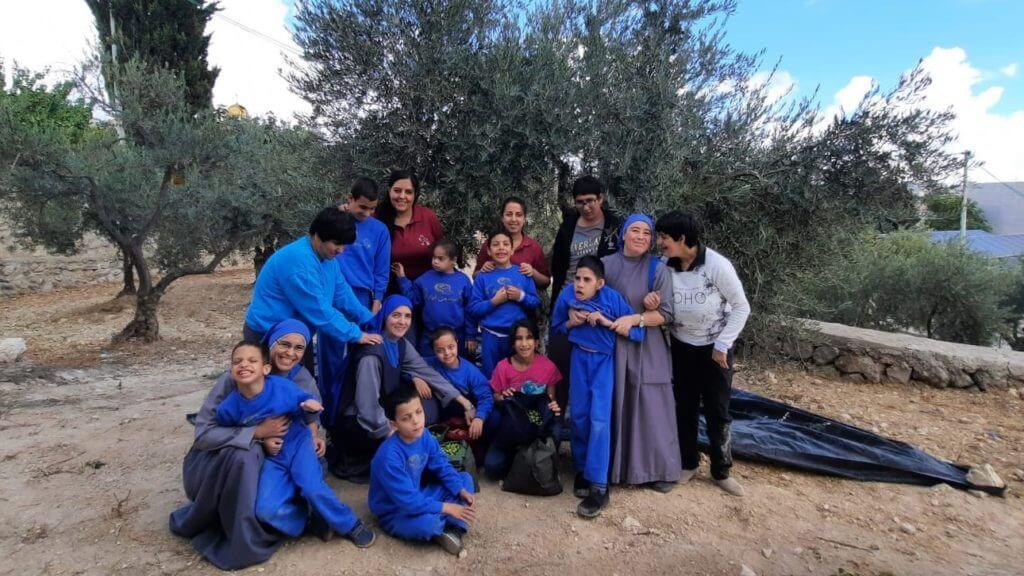 Read more about the article قطف الزيتون مع اطفال بيت الطفل الالهي في بيت لحم